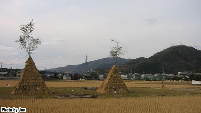 20110111.02.dondo.jpg